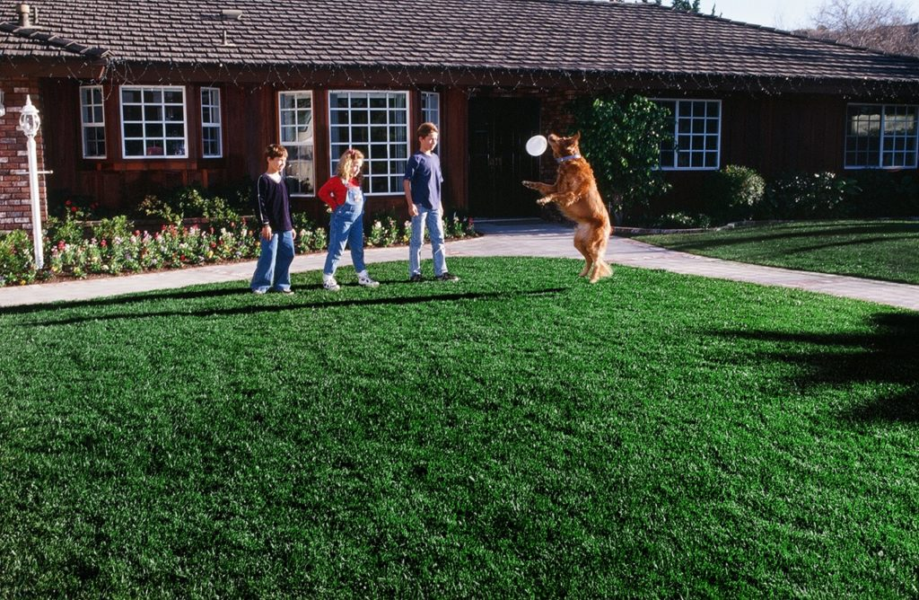 Products - Southland SOD Farms