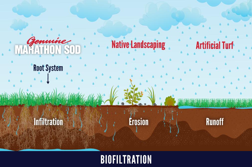marathon-biofiltration-web