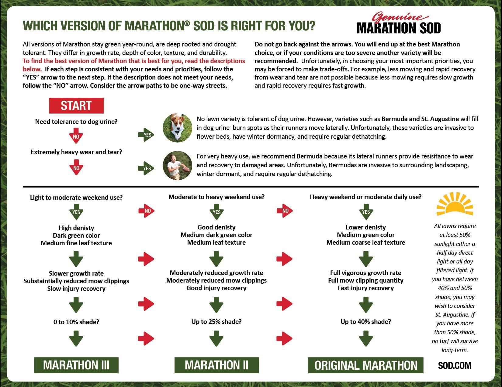 Choose the Right Marathon - Southland SOD Farms